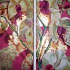 Orchidea rosa