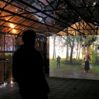 Videowerk van Mirjam Somers in de kas
