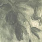 Tulp nr.2 - 1999